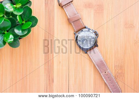 Wristwatch the beautifully arranged on a wooden table with a green tree complete the composition.