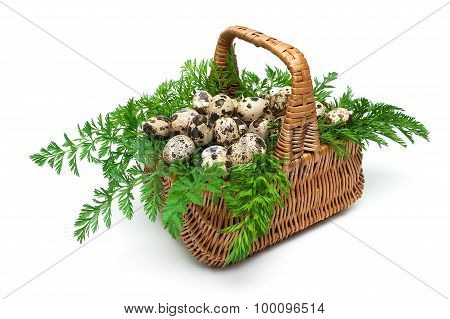 Quail Eggs In A Basket Isolated On A White Background