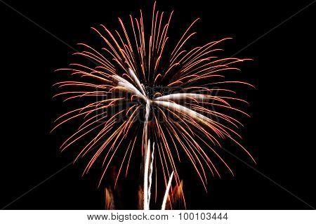 celebrated fireworks in the sky