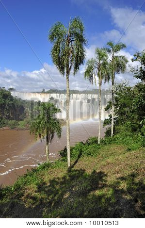 iguazu watefalls landscape