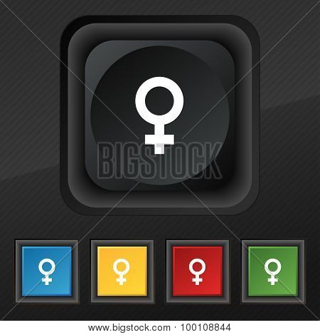 Symbols Gender, Female, Woman Sex  Icon Symbol. Set Of Five Colorful, Stylish Buttons On Black Textu