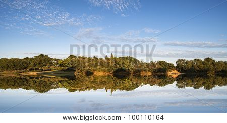 Landscape image of calm lake with forest reflected in it