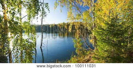 lake with golden trees on the bank