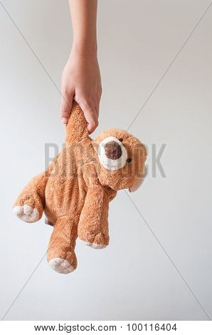 Woman Holding Bear