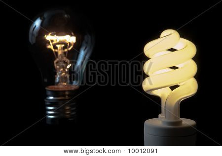 Priority Of Compact Flourescent Light Bulb