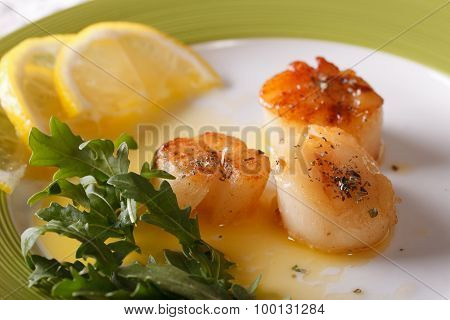 Grilled Scallops With Sauce On A Plate Close-up. Horizontal