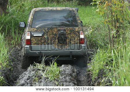 Suv In A Swamp