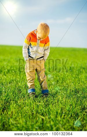 Portrait of happy joyful beautiful little boy outdoor at countryside. Pointing concept.