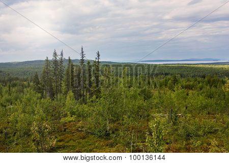 Lake View Pyaozero. North Karelia. Russia
