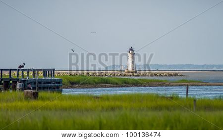 Waterway Scenes Near Cockspur Island Lighthouse