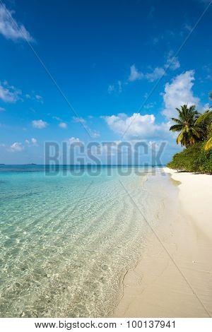 Perfect Tropical Island Paradise Beach