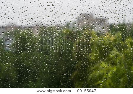 Raindrops On A Window Pane. Summer Day. In The Background Buildings And Trees