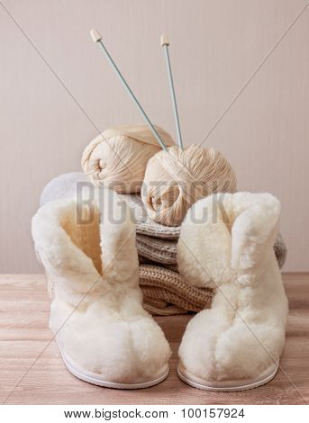 Winter Sheepskin Slippers (selective Focus)