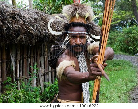 Dani Dugum Warrior.