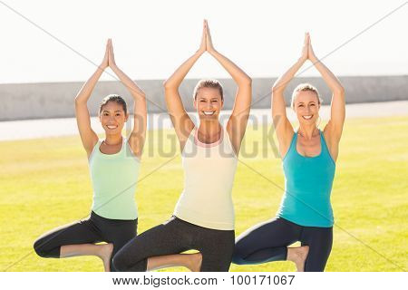 Portrait of smiling sporty women doing yoga together in parkland