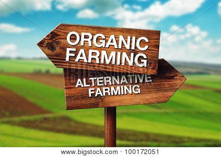 Organic Or Alternative Farming