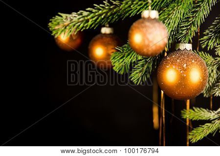 Black Christmas Background With Fir Branch