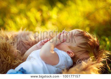Sleeping Yawning Shaggy Baby Boy, Close-up, Summer