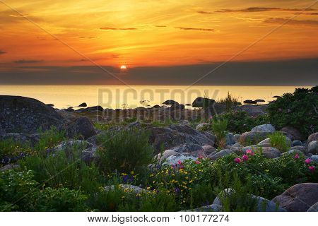 Setting sun at the rocky coast