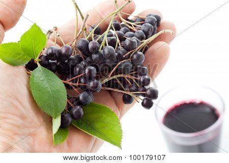 Hand With Chokberries, Glass With Aronia Juice