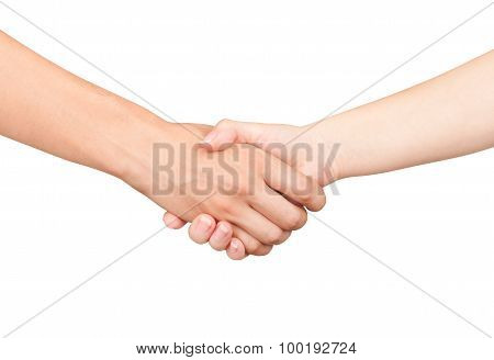Handshake, Men And Women On An Isolated White Background