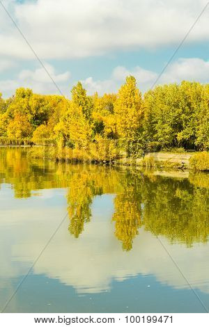 River And Forest In Sunny Autumn Day