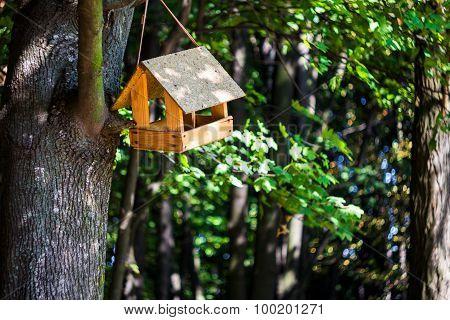 Wooden Birdhouse In Park, Outdoors