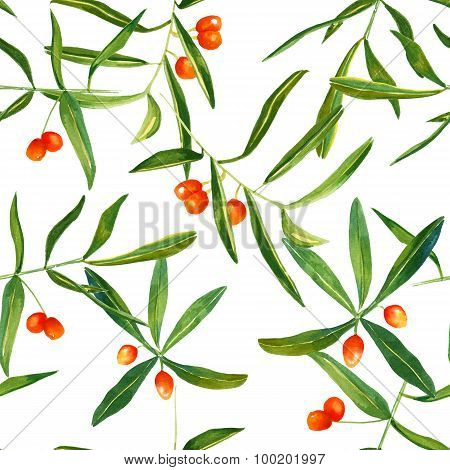 Watercolour sandthorn berries and leaves seamless background pattern