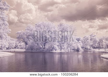 Infrared Photo Trees And Grass In Public Park With Pond