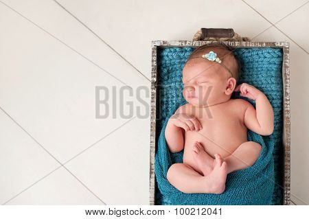 Sleeping Newborn Baby Girl In Wooden Crate