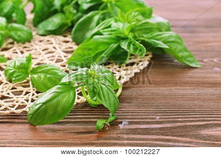 Green fresh basil with wicker stand on table close up