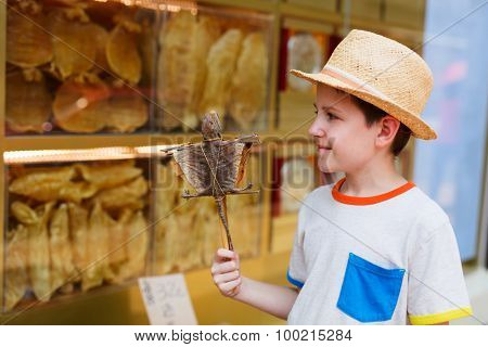Boy holding dried gecko on stick at street of Hong Kong