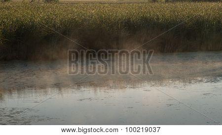 Wetland Water Mist