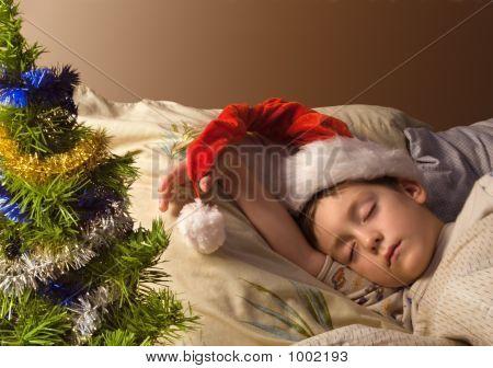 Holiday Dream-1