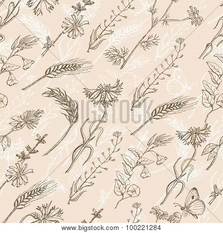 Seamless pattern with wild plants on a beige background