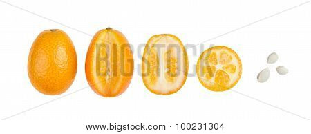 Oval Kumquats With Seeds In A Row Isolated On White