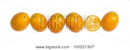 Six Oval Kumquats In A Row On White Background