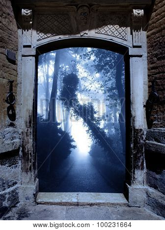 Ancient portal and mysterious landscape with road in foggy forest