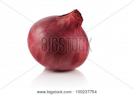 Small Ripe Red Onion