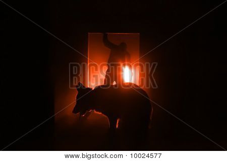 The Silhouette Of A Man With A Dog