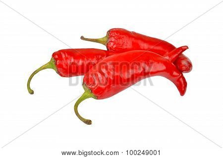 Red cayenne chili pepper