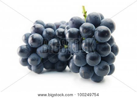Two Kyoho grapes (giant mountain grapes) upright, isolated on white. One in front and other in background.