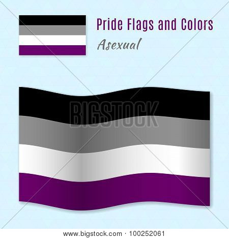 Asexual Pride Flag With Correct Color Scheme.
