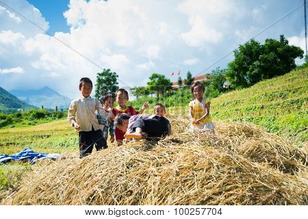 H'Mong ethnic minority children are jumping on a pile of straw