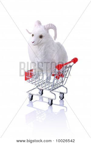 Model Ram In Shopping Cart Isolated