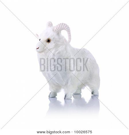 Model Ram Isolated On White