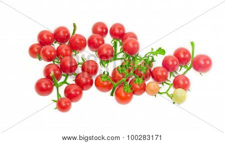 Several Branches Of Cherry Tomato On A Light Background