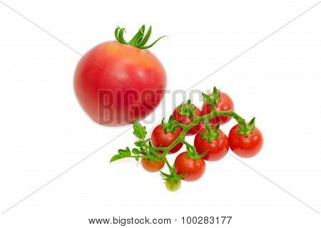 Branch Of Cherry Tomato And One Conventional Tomato