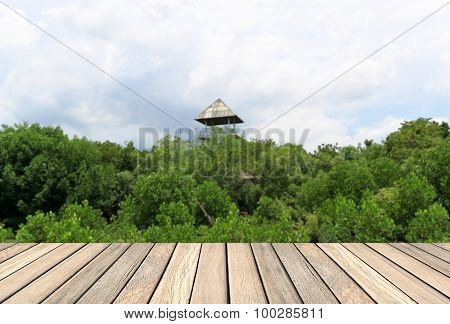 Wood Decking And Green Plant For Background Usage