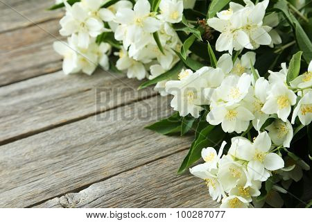 White Flowers Of Jasmine On Grey Wooden Background